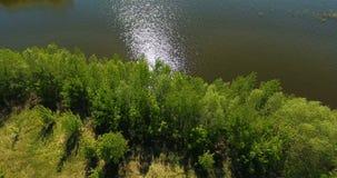 Luchtvideo van een groot meer en een overstroomde rivier stock videobeelden