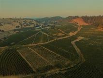 Luchtwijngaardenschoten - de Wijnmakerijen van Californi? stock afbeelding