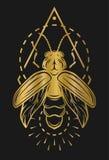 Luciérnaga de oro y elementos geométricos Imagen de archivo libre de regalías
