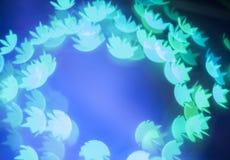 Luci blu del bokeh nella forma della ninfea Fotografia Stock Libera da Diritti
