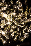 Luci brillanti dell'albero Fotografia Stock