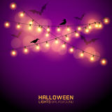 Luci d'ardore di Halloween Fotografie Stock Libere da Diritti
