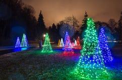 Luci degli alberi di Natale al tramonto fotografie stock