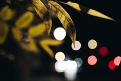 Luci di Bokeh nella notte immagini stock