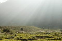Luci di mattina alla montagna immagine stock libera da diritti