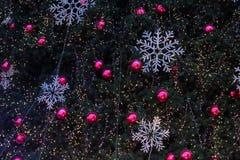 Luci di Natale che appendono in un albero Immagine Stock Libera da Diritti