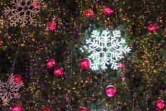Luci di Natale che appendono in un albero Fotografie Stock