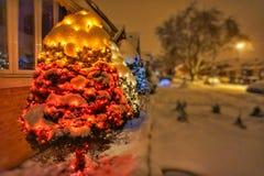 Luci di Natale di Chicago in alberi Fotografia Stock Libera da Diritti