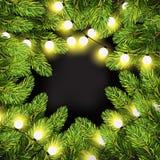 Luci di Natale sui rami del pino Immagine Stock