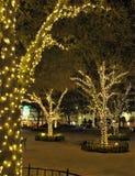 Luci di Natale di West Palm Beach immagini stock