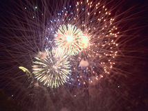 Luci dorate nel cielo notturno o nel fuoco d'artificio di festival Fotografia Stock