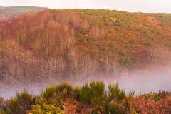 Luci e foschia di tramonto sul plateau dell'alta montagna immagine stock
