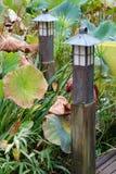 Luci e Lotus Leaves dello stagno del giardino Fotografie Stock Libere da Diritti