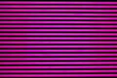 Luci fluorescenti rosa Fotografia Stock Libera da Diritti