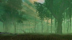 Luci leggiadramente della lucciola nella foresta nebbiosa di notte illustrazione vettoriale