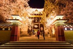 Luci notturne del tempio in Shangri-La, Cina immagine stock