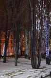 Luci sugli alberi Fotografia Stock Libera da Diritti