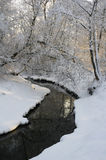 Lucina river. Vicinity of Havirov, Czech Republic - narrow creek during winter season. Ground is covered by white snow. Dense forest with bare tree over the Royalty Free Stock Images