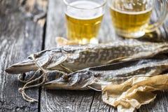 Lucio de los pescados: secado, secado con un vidrio de cerveza Imágenes de archivo libres de regalías