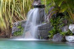 Lucious siklawa otaczająca Tropikalnymi roślinami fotografia stock