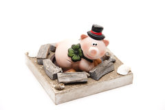 Luck pig Royalty Free Stock Photography