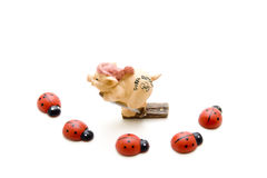 Luck pig with beetle Royalty Free Stock Image