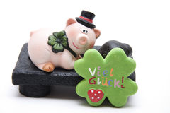 Luck pig and cloverleaf. On black plate Stock Photo