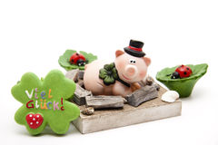 Luck pig with ladybird Stock Photos