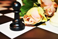 Luck in relationships. Roses on a chess board, suggesting the need of fortune and luck in love and relationships Royalty Free Stock Photos