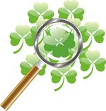 Luck search -  four leaf of clover. Or shamrock under  magnifying glass Stock Image