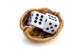 LUCK IS UNCERTAINTY. Two dices in a nutshell on a journey for luck Royalty Free Stock Image