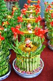 Lucky Bamboo Plant Royalty Free Stock Image