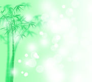 Lucky bamboo with snow poster Royalty Free Stock Images