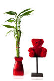 Lucky bamboo and teddy bear. Red bear alongside a lucky bamboo plant and red vase Stock Photography