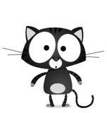 Lucky black cat Stock Photography