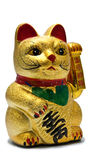 Lucky cat Stock Image