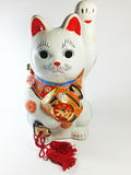 Lucky cat doll Stock Photos