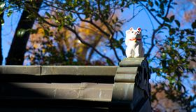 Lucky cats at Gotokuji-temple. Japanese Ceramic Lucky Cats at Gotokuji-temple Stock Images