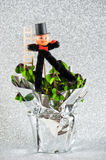 Lucky charm chimney sweep with shamrock. New Year. S symbols of luck clover and ladybug Stock Photo