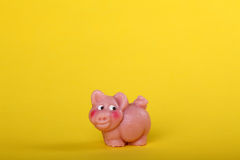 Lucky charm with pig Stock Photo