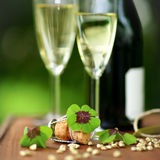 Lucky clover Stock Photography