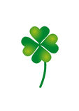 Lucky clover. Saint Patrick's day clover. Four leafs clover symbol Royalty Free Stock Photography