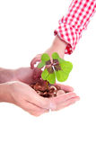 Lucky clover and coins in hands Royalty Free Stock Images