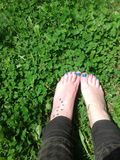 Lucky clover feet. Barefoot in green clover Royalty Free Stock Image