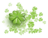 Lucky clover Stock Image