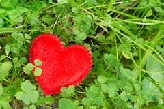 Lucky clover and a heart Stock Photography