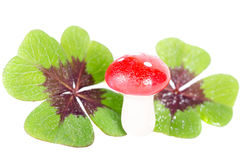 Lucky devil with clover Stock Photo