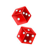 Lucky dice on white vector stock illustration