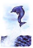Lucky Dolphin (Zen Pictures II, 2012) Immagine Stock Libera da Diritti