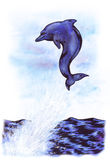 Lucky Dolphin (Zen Pictures II, 2012) Royalty Free Stock Image